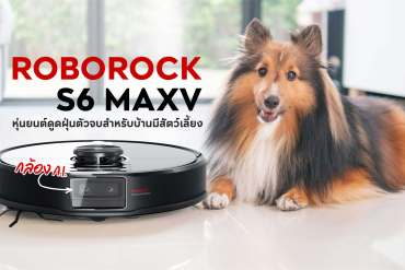ROBOROCK S6 MAXV รีวิวหุ่นยนต์ดูดฝุ่นตัวท็อปพร้อมกล้อง A.I. ฉลาดขนาดหลบอึหมาได้ 5 - greenery product
