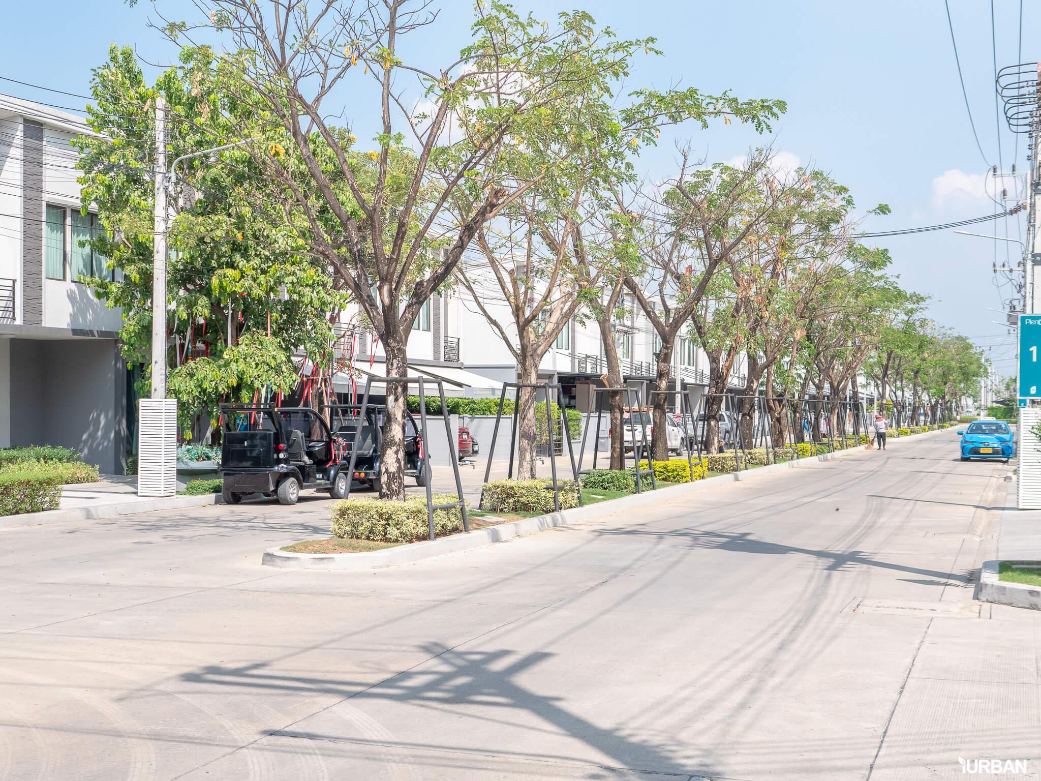 พาชมบ้านจริง PLENO พหลโยธิน-รังสิต ชีวิตทันสมัย ใกล้ฟิวเจอร์พาร์ครังสิต เริ่มแค่ 1.99 ลบ. 38 - AP (Thailand) - เอพี (ไทยแลนด์)