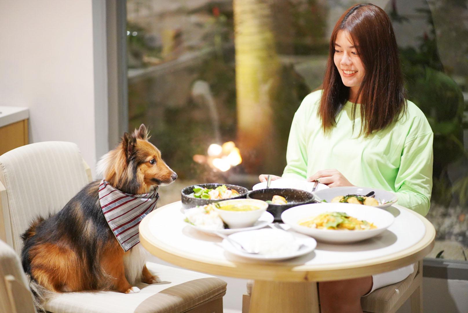 รีวิว Avani+ Hua Hin Resort พูลวิลล่าส่วนตัวสุดหรู หนึ่งในรีสอร์ทสุนัขพักได้ที่ดีที่สุดในไทยจากเชนจ์ Minor 68 - Avani