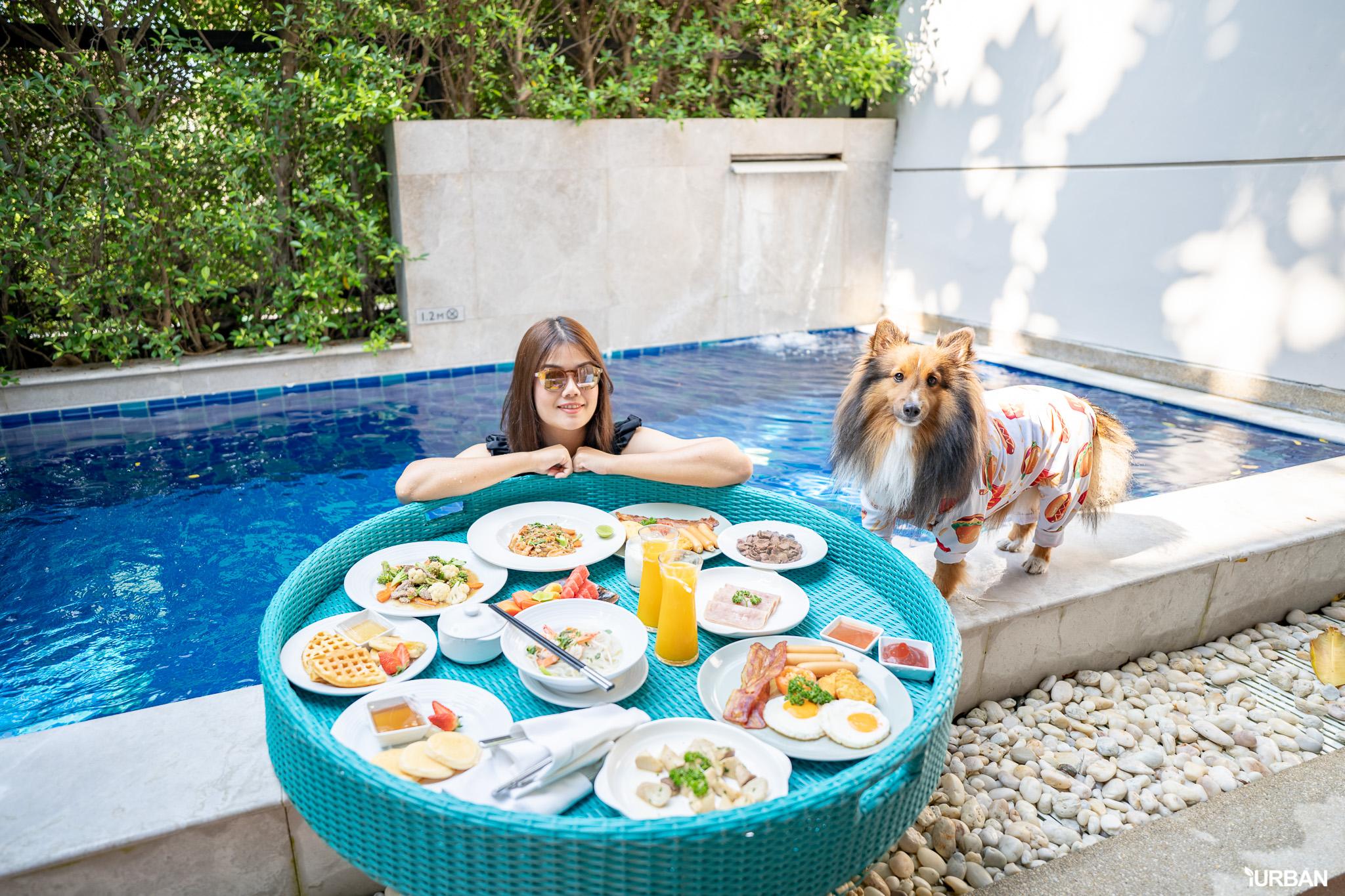 รีวิว Avani+ Hua Hin Resort พูลวิลล่าส่วนตัวสุดหรู หนึ่งในรีสอร์ทสุนัขพักได้ที่ดีที่สุดในไทยจากเชนจ์ Minor 60 - Avani