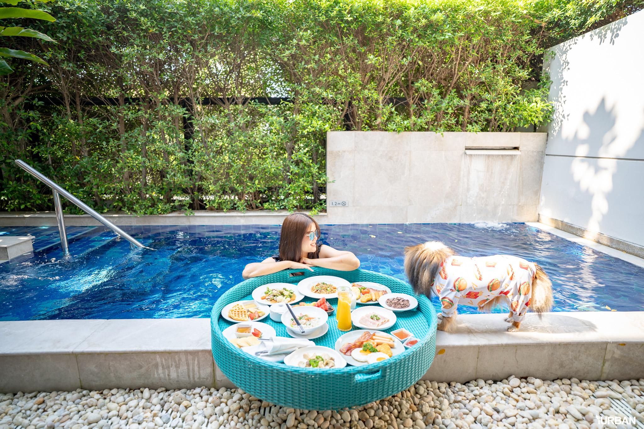 รีวิว Avani+ Hua Hin Resort พูลวิลล่าส่วนตัวสุดหรู หนึ่งในรีสอร์ทสุนัขพักได้ที่ดีที่สุดในไทยจากเชนจ์ Minor 58 - Avani