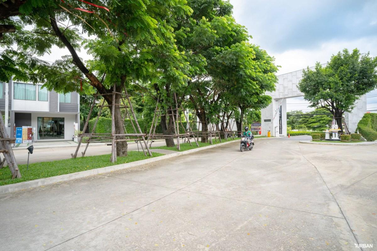 รีวิว PLENO รังสิตคลอง 4 - วงแหวน ทาวน์โฮมดี ส่วนกลางเยี่ยม ทำเลเลิศ แต่เริ่มแค่ 1.69 ล้าน 24 - AP (Thailand) - เอพี (ไทยแลนด์)