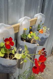 photo 27 สวนแขวนจากขวดนมพลาสติกใช้แล้ว