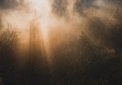 nube tabor