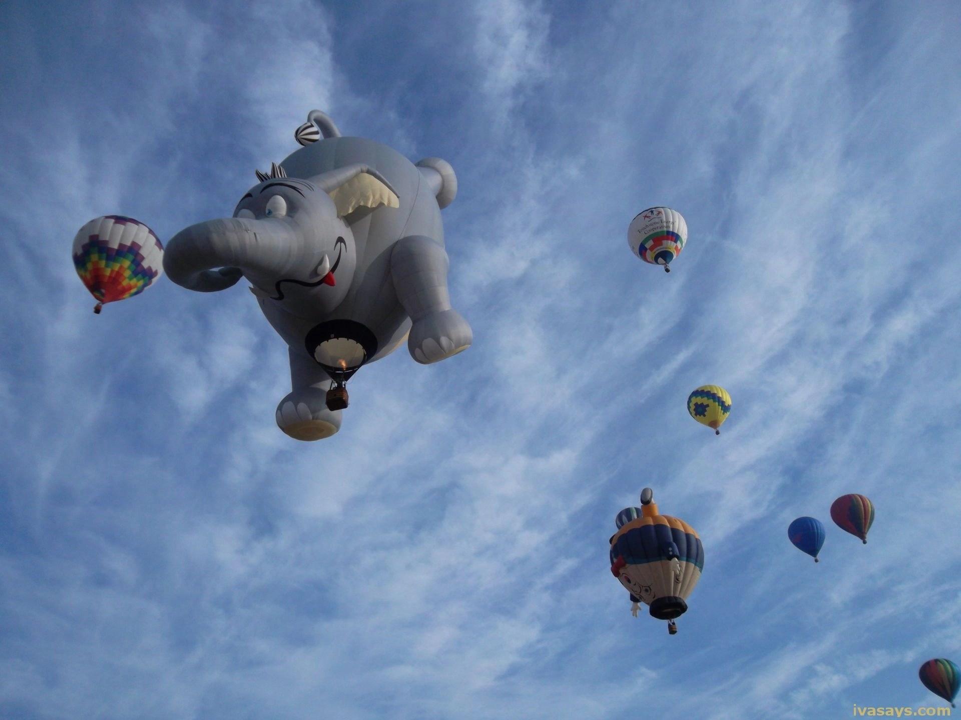 Elephant Hot Air Balloon