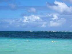 The ocean at the resort in punta cana