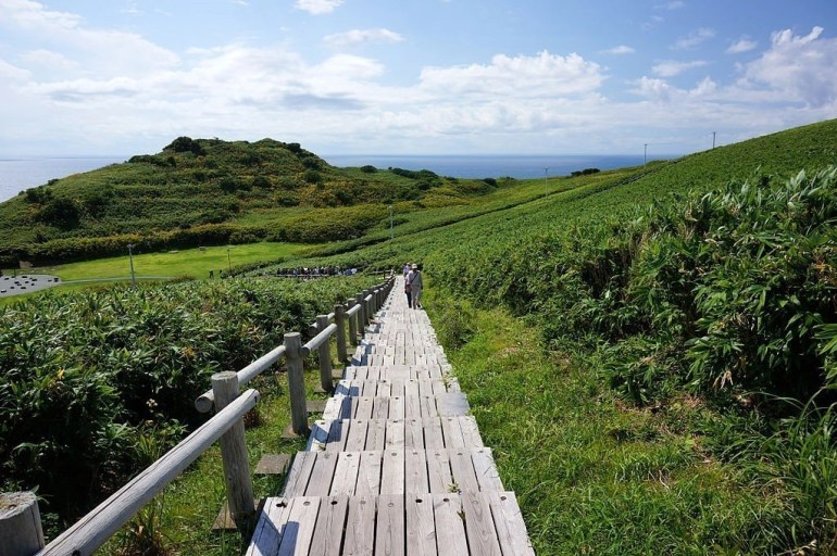 A wooden path on the Hokkaido trail in Japan, Asia.