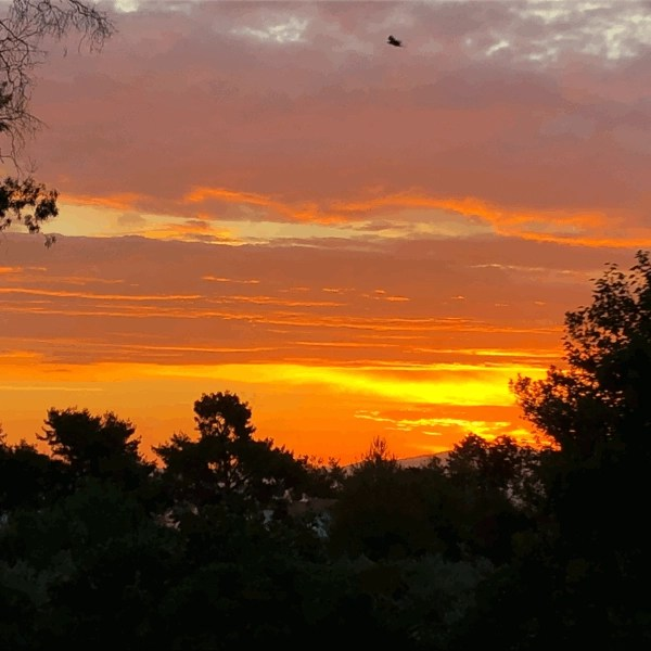 The sun rising over the horizon and into the clouds. A beautiful red, orange colors forming in the sky as the sun goes up. Chaniotis offers beautiful sunrises and sunsets.