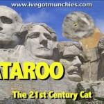 cataroo-poster