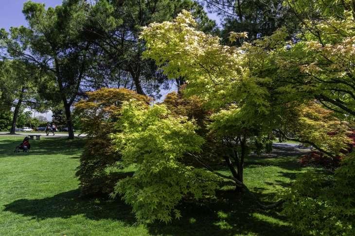 Parco giardino Sigurtà, le mie letture ispirate