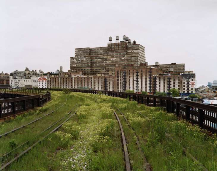 La High Line di New York: da ex ferrovia a destinazione cool