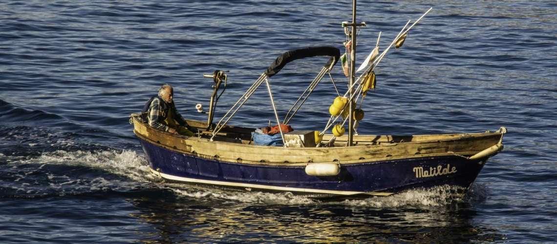 Le acciughe di Monterosso si pescano a Giugno