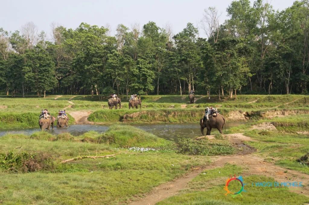 Il safari a dorso d'elefante - Chitwan National Park