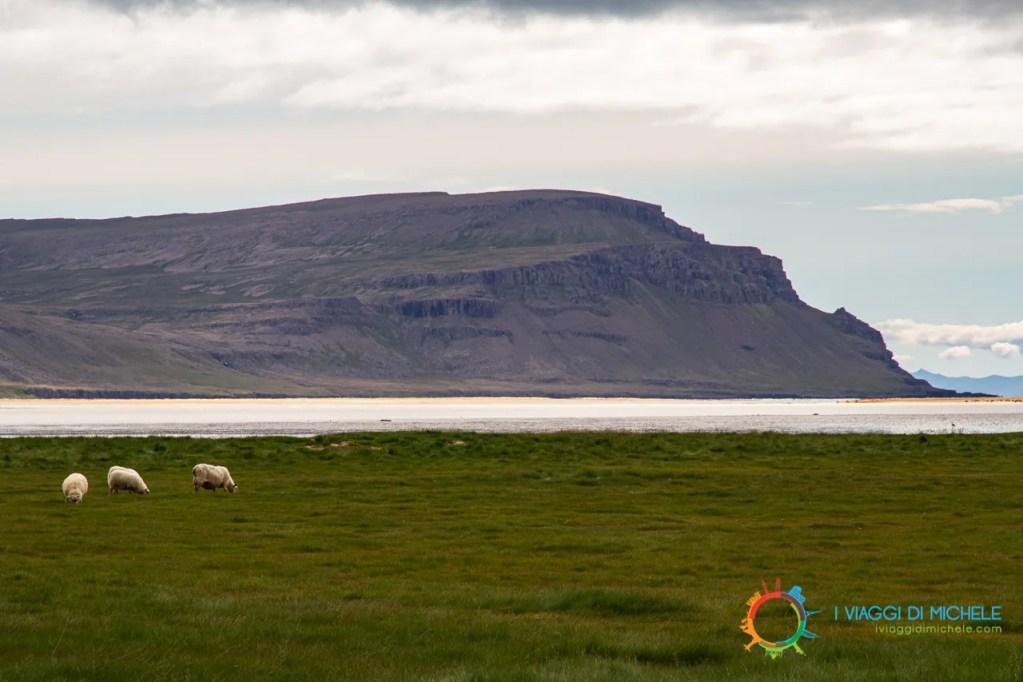 La spiaggia di Rauðisandur - Fiordi occidentali islandesi