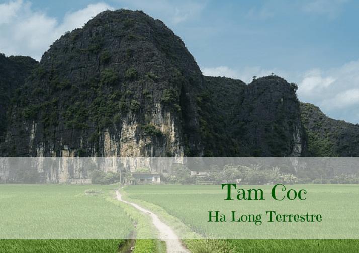 Visita di Tam Coc – Ha Long terrestre