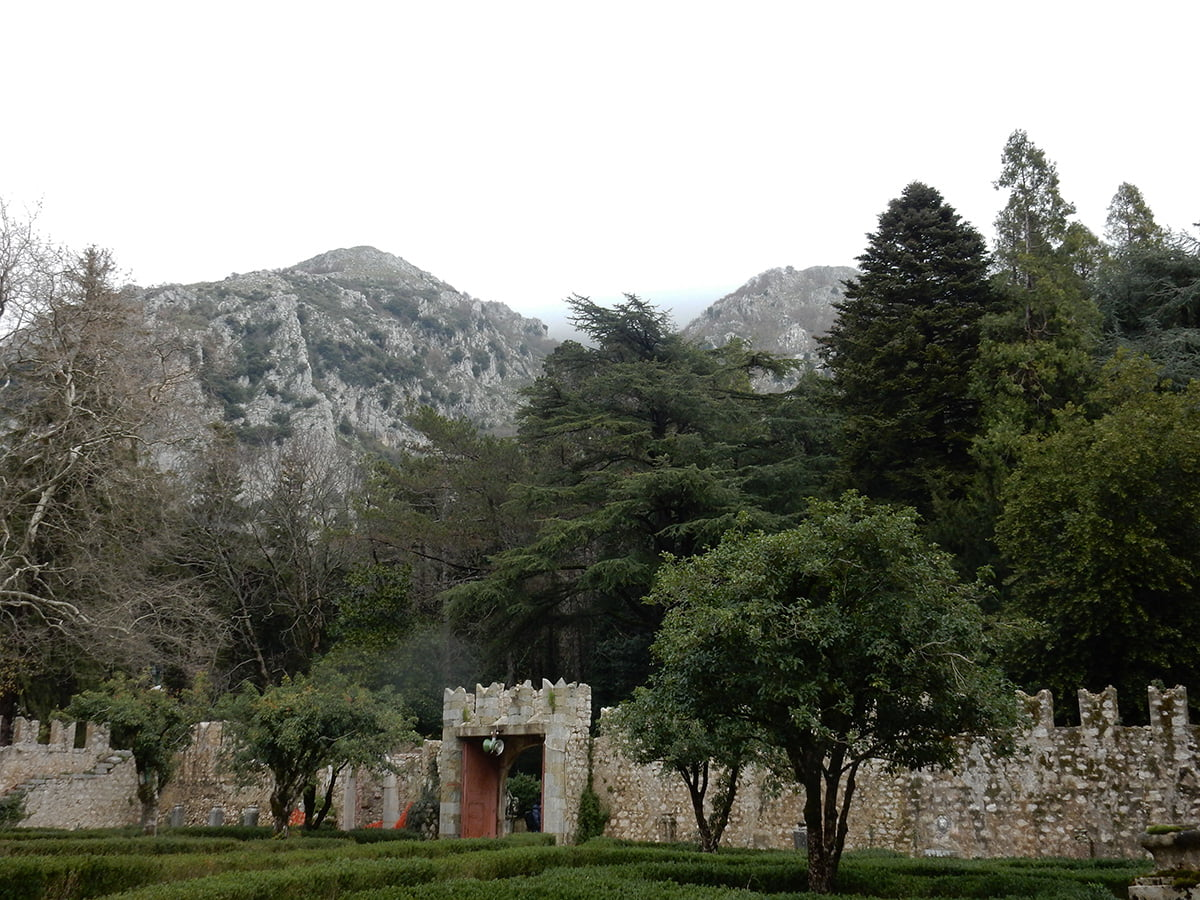 vista del giardino dagli interni di Villa d'Ayala