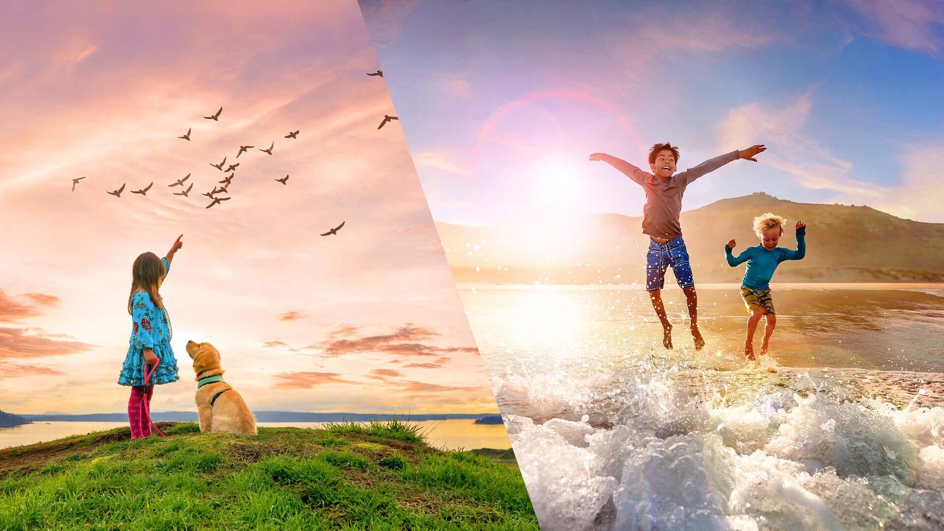 Adobe announced Photoshop Elements 2021 and Premiere Elements 2021