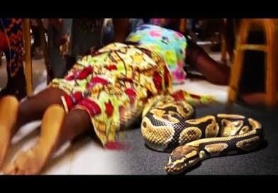 Mon mari se transforme en serpent