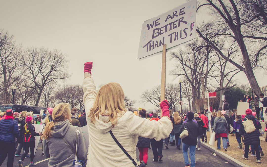 How to Create a Political Activism Theme: A Columbia, UPenn, Brown, UChicago Success Story