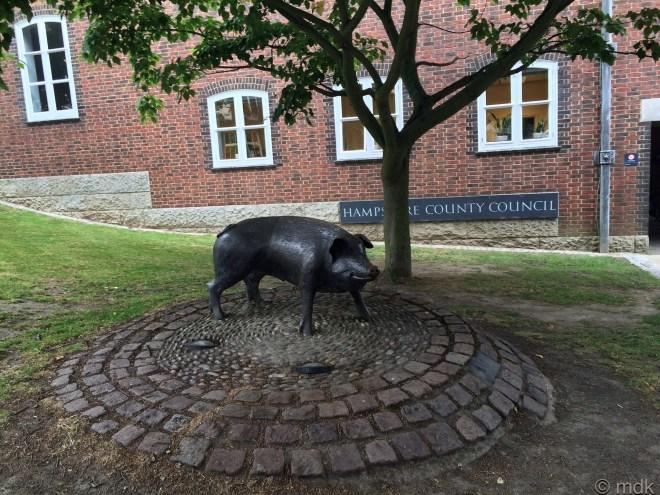 Hampshire Hog