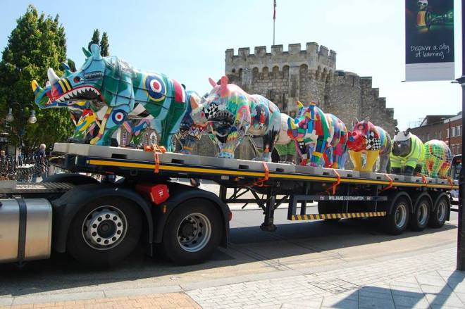 The rhinos come to Southampton from https://www.facebook.com/GoRhinos/?fref=ts