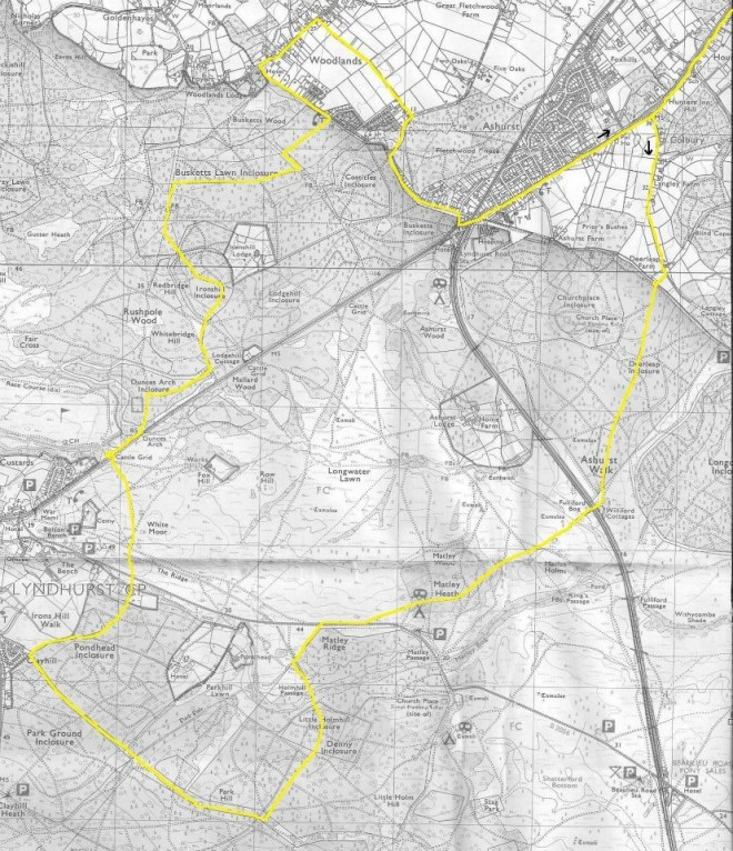 image441