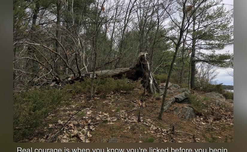 Hahne Farm Trail