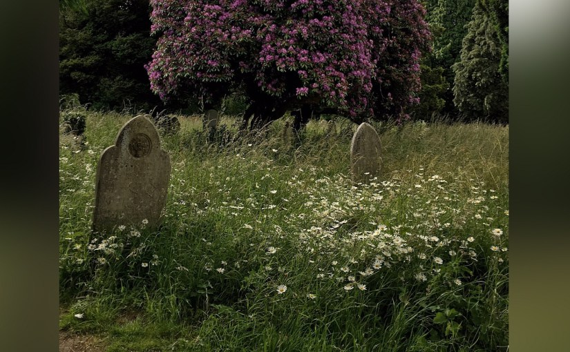 The oldest graves