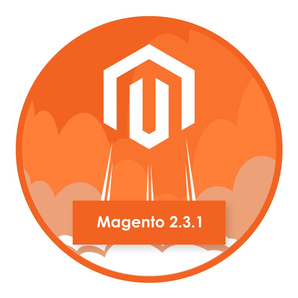 Magento 2.3.1 Update Information