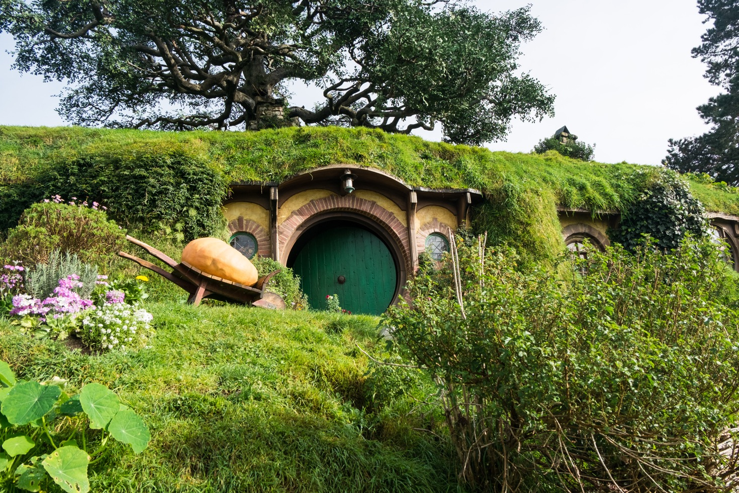 hobbiton in the footsteps of bilbo and frodo baggins. Black Bedroom Furniture Sets. Home Design Ideas