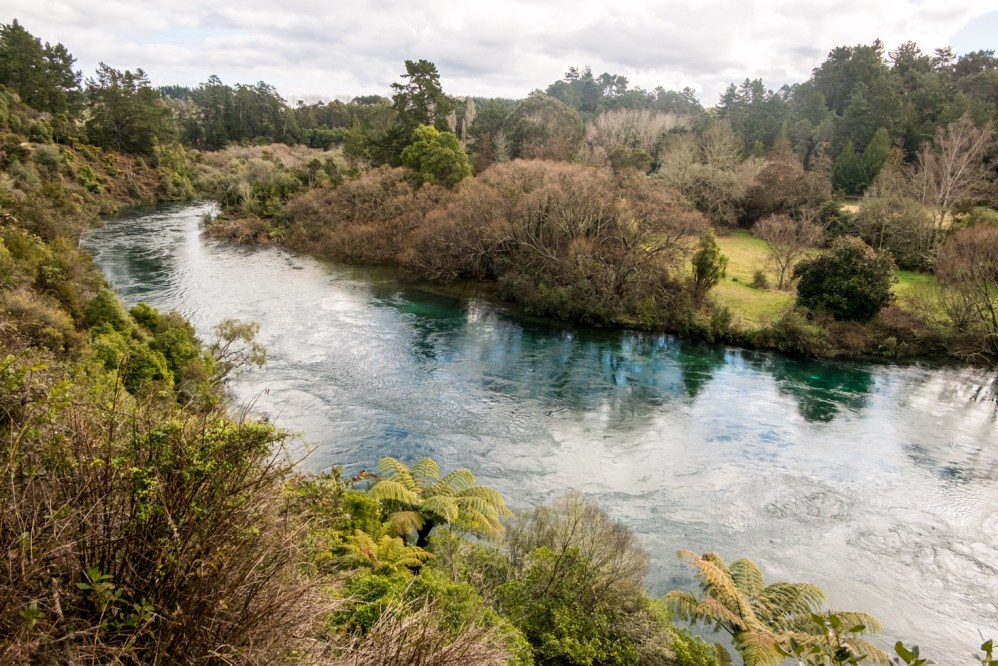 View on the Waikato river from the walk.