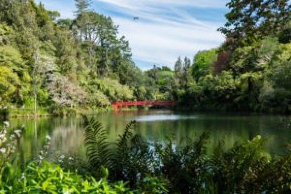 Le bush avec un petit lac en prime !