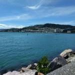 Wellington noel été