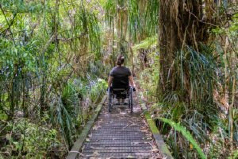 Nouvelle-Zélande voyage fauteuil roulant