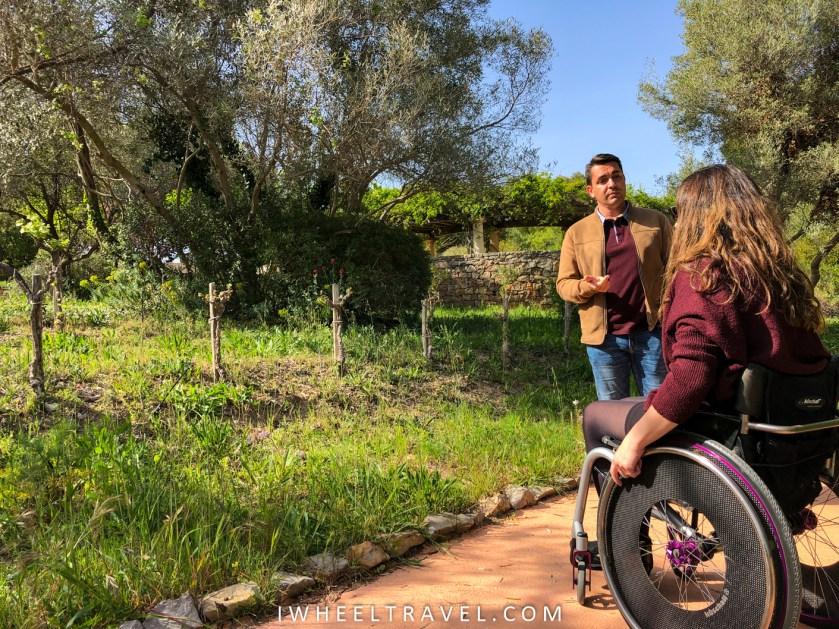 jardin antique méditerranéen balaruc fauteuil roulant