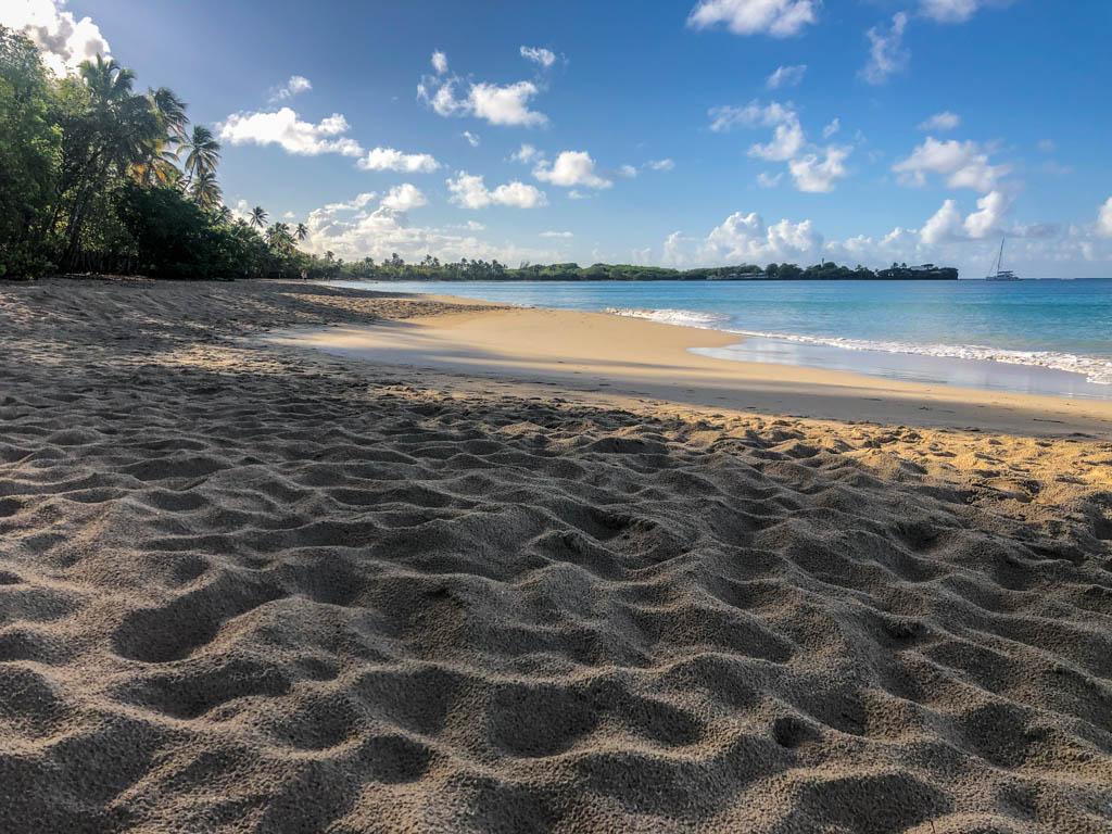 plage salines sainte anne