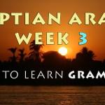 Learning Egyptian Arabic Grammar – Week 3 Summary