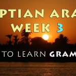 Learning Egyptian Arabic Grammar – Week 3 Summary