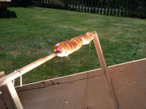 solar_hot_dog_cooker_5_closeup