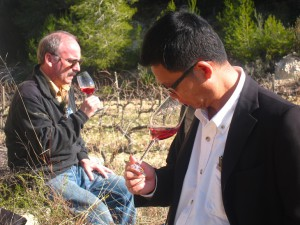 Wine Tourism with Wine Pleasures