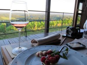 Bolfan Vinski Vrh winery visit iwinetc 2013 Croatia Social prog
