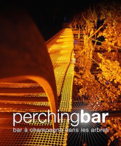 Perching Bar  at IWINETC 2015