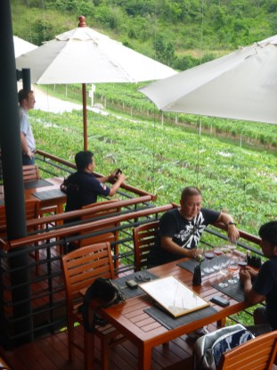 Huahin Hills Vineyards (3)