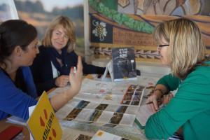 IWINETC Wine Tourism Workshop