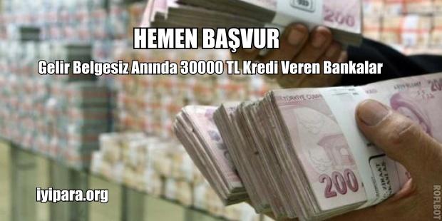 Gelir Belgesiz Anında 30000 TL Kredi Veren Bankalar