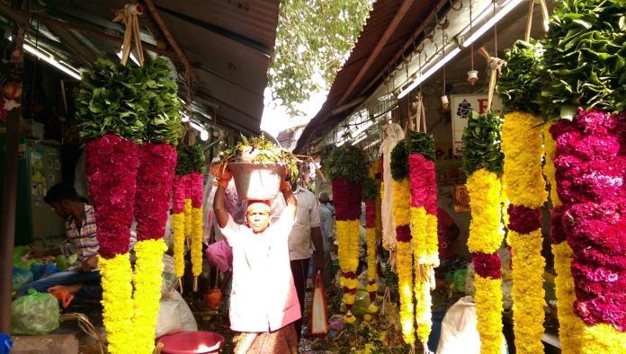 En Inde, tout est prolifique - Crédit photo izart.fr