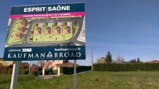 Recette N°80 - Salade sauvage de printemps 2 - Crédit photo izart.fr