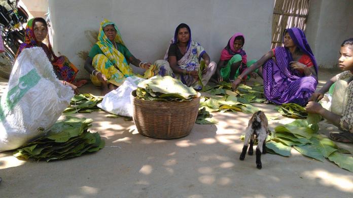 L'Inde passe du jetable au durable - Crédit photo izart.fr