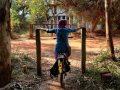 Prendre le bon chemin - Crédit photo izart.fr