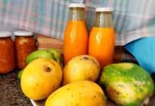 Recette N°210 - Nectar mangue-papaye - Crédit photo izart.fr